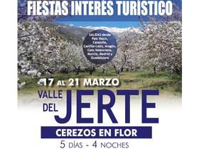 VALLE DEL JERTE - CEREZOS EN FLOR